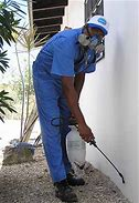 Pest Control Companies SA